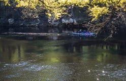 Les gens sont canoë-kayak sur la rivière de Suwanee Images libres de droits