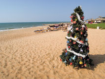 Les gens sunbatheing sur la plage de Candolim Photo libre de droits
