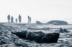 Les gens sur la plage venteuse désolée Image stock