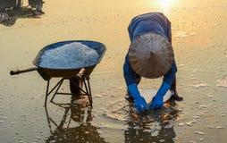 Les gens travaillant au gisement de sel à l'été photographie stock libre de droits