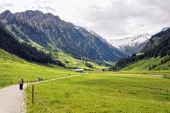 Les gens trimardant par le paysage alpin de la vallée de Zillertal Photo libre de droits