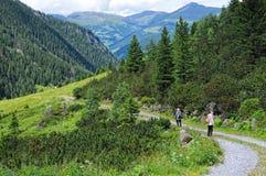 Les gens trimardant par le paysage alpin de la vallée de Zillertal Photographie stock libre de droits