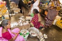 Les gens vendant des poissons à un marché en plein air, marché quotidien de canalisation Images libres de droits