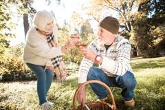 Les gentilles personnes âgées avec plaisir comparant leurs résultats image libre de droits