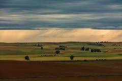Les gisements de céréale aménagent en parc et des nuages photo libre de droits