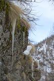 Les glaçons détaillent dans l'horaire d'hiver de neige Images libres de droits