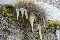 Les glaçons détaillent dans l'horaire d'hiver de neige Photos stock