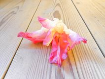 Les glaïeuls fleurissent sur la peinture numérique blanche de fond en bois photos stock