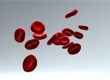 les globules sanguins circulent Photo libre de droits