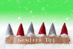 Les Gnomes, fond vert, flocons de neige, Geschenk Tipp signifie l'astuce de cadeau Photo stock