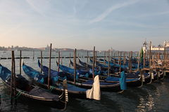 Les gondoles ont amarré à Venise Photographie stock libre de droits