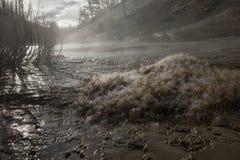 les gouttelettes proches de rosée engazonnent l'eau haute parfaite de matin de lame photos libres de droits
