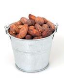 Les graines de cacao peuvent dedans Photos libres de droits