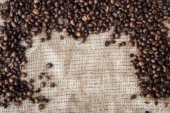 Les graines de café Image stock