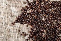 Les graines de café Photos libres de droits