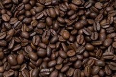 les graines de café proches de fond ont isolé la photo vers le haut du blanc Images libres de droits