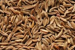 Les graines de cumin. Photographie stock libre de droits
