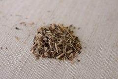 Les graines de la casse Tora--une médecine de chinois traditionnel Image libre de droits