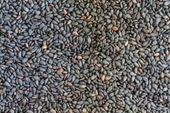 Les graines de sésame noires. Image libre de droits