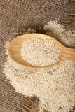 Les graines de sésame dans une cuillère en bois Images stock