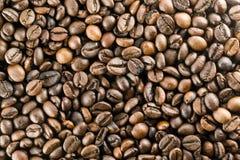Les grains de café Photo libre de droits
