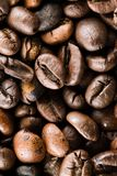Les grains de café photos libres de droits