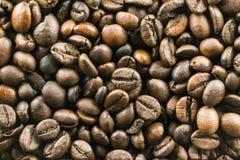 Les grains de café Images libres de droits