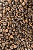Les grains de café Photographie stock libre de droits