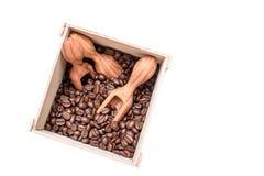 Les grains de café parfumés grillés se situent dans une boîte en bois, dans des scoops d'un mensonge de boîte d'oliftwood avec de Images libres de droits