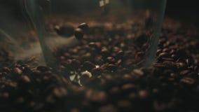 Les grains de café rôtis parfumés éclaboussent au verre Fum?e aromatique et fond brun dans le mouvement lent banque de vidéos