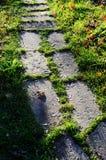 Les grandes pierres ont pavé le chemin en verts Photographie stock