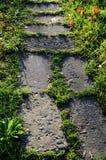 Les grandes pierres ont pavé le chemin en verts Photo libre de droits