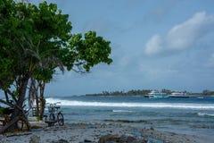 Les grandes vagues des Maldives photos stock