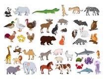 Les grands animaux ont placé, illustration avec la collection d'animaux d'isolement sur le fond blanc Illustration Libre de Droits