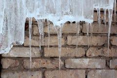 Les grands glaçons accrochent sur le vieux mur de briques grunge de fond Photos libres de droits