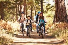 Les grands-parents et les enfants faisant un cycle sur la forêt traînent, la Californie Photo stock