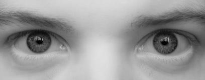 Les grands yeux se ferment vers le haut Image stock