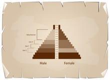 Les graphiques de pyramides de population avec la génération 4 illustration de vecteur