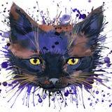 Les graphiques drôles de T-shirt de chaton, illustration drôle de chaton avec l'aquarelle d'éclaboussure ont donné au fond une co Images stock