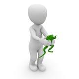 Les grenouilles sont vertes Photos stock