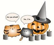 Les gros chats parlent de Halloween images stock