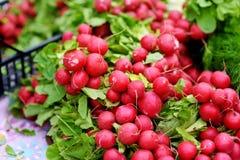 Les groupes de radis frais se sont vendus sur le marché du ` s d'agriculteur Images stock