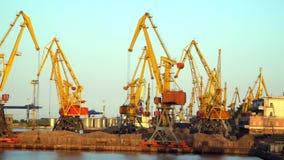 Les grues au port ont illuminé le soleil de soirée Image stock
