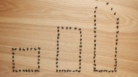 Les haricots noirs sont les barres formées de statistique sur la table en bois illustration libre de droits