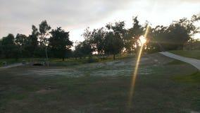 Les hausses du soleil Photo stock