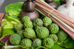 Les herbals thaïlandais de Kaffir assaisonnent et des ingrédients pour presque de nourriture thaïlandaise telle que TOM YUM KUNG  Photographie stock