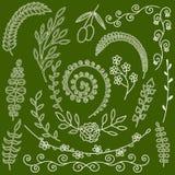 Les herbes de jardin d'éléments et les plantes florales tirées par la main de fougère silhouettent le jardin d'herbes sauvage Photographie stock