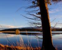 Les heures d'or chez Kielder arrosent, parc du Northumberland, Angleterre Image stock