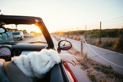 Les hippies de couples dans l'amour montent le convertible en été images stock