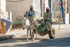 Les hommes égyptiens montent son char d'âne Image stock